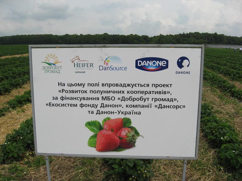 Источник: agroperspectiva.com