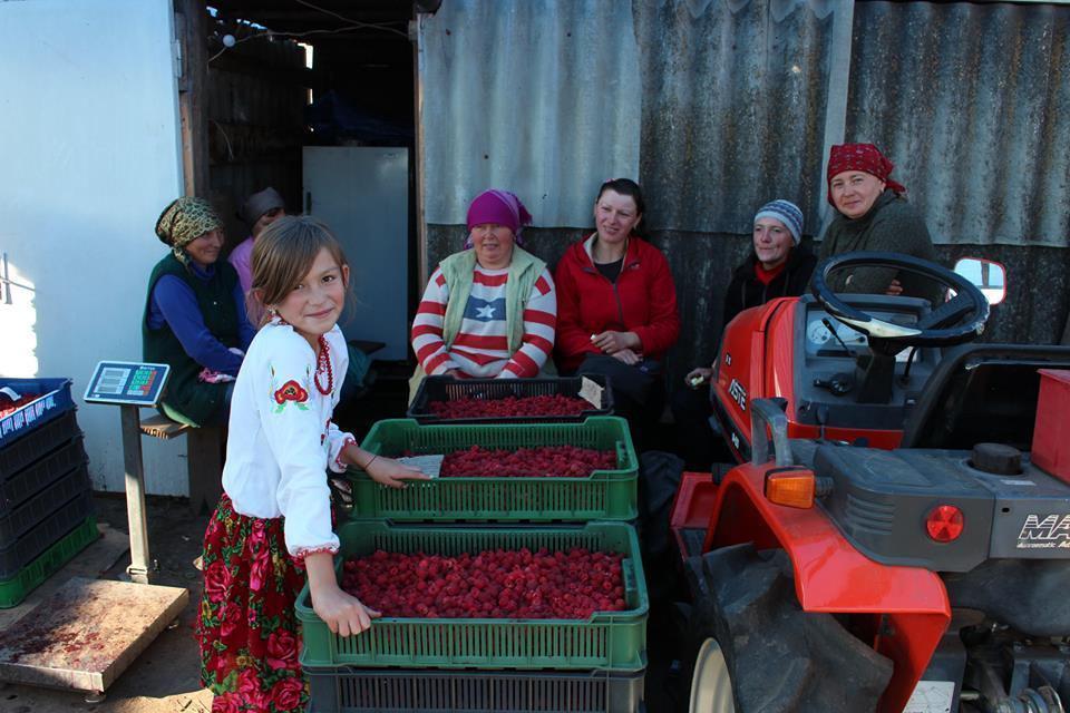 Сельскохозяйственный обслуживающий кооператив «Файна Поляна». Источник: Facebook MRIYA Agro Holding