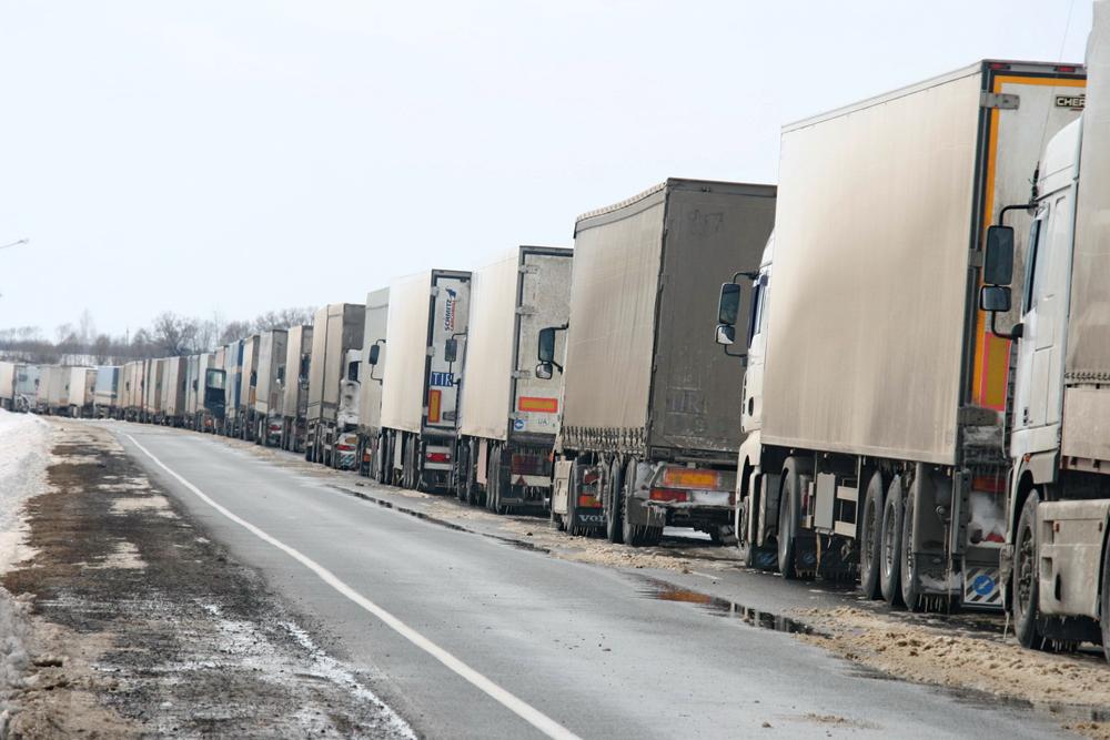 В течение последних двух недель фитосанитарными органами Польши осуществляются дополнительные проверки грузовиков, которые перевозят малину из Украины