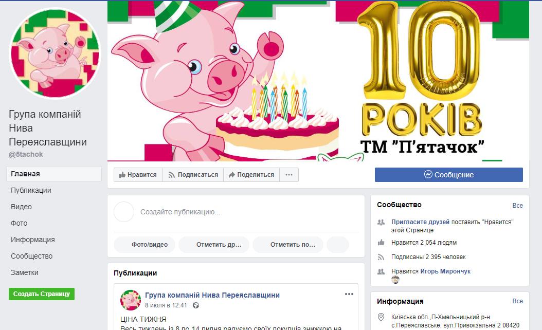 Скриншот страницы «Група компаній Нива Переяславщини»