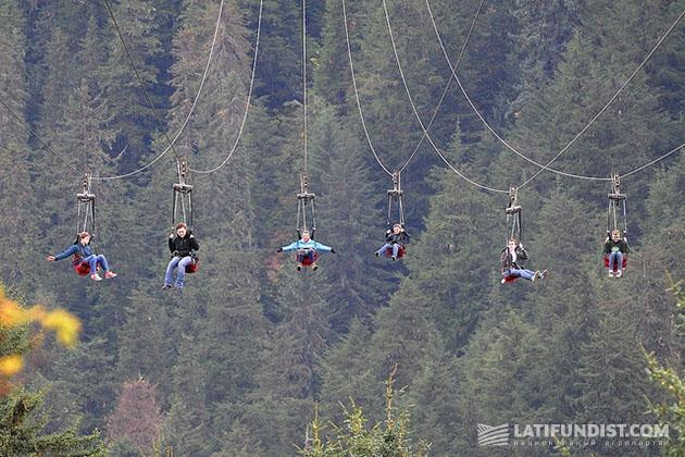 Hoonah Alaska Zipline. На фото – не страшно