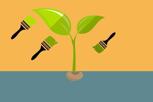 Семена-«крашенки»