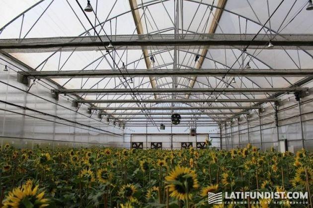 Взгляд изнутри: Технологический центр по изучению полевых культур